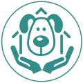 Vancouver Dog Teeth Cleaning Clinic