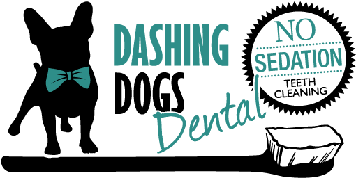 Dashing Dogs Dental