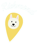 Vancouver Dog Teeth Cleaning - Sedation Free Clinic Richmond